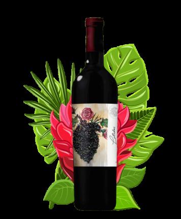 vino_4_latidos